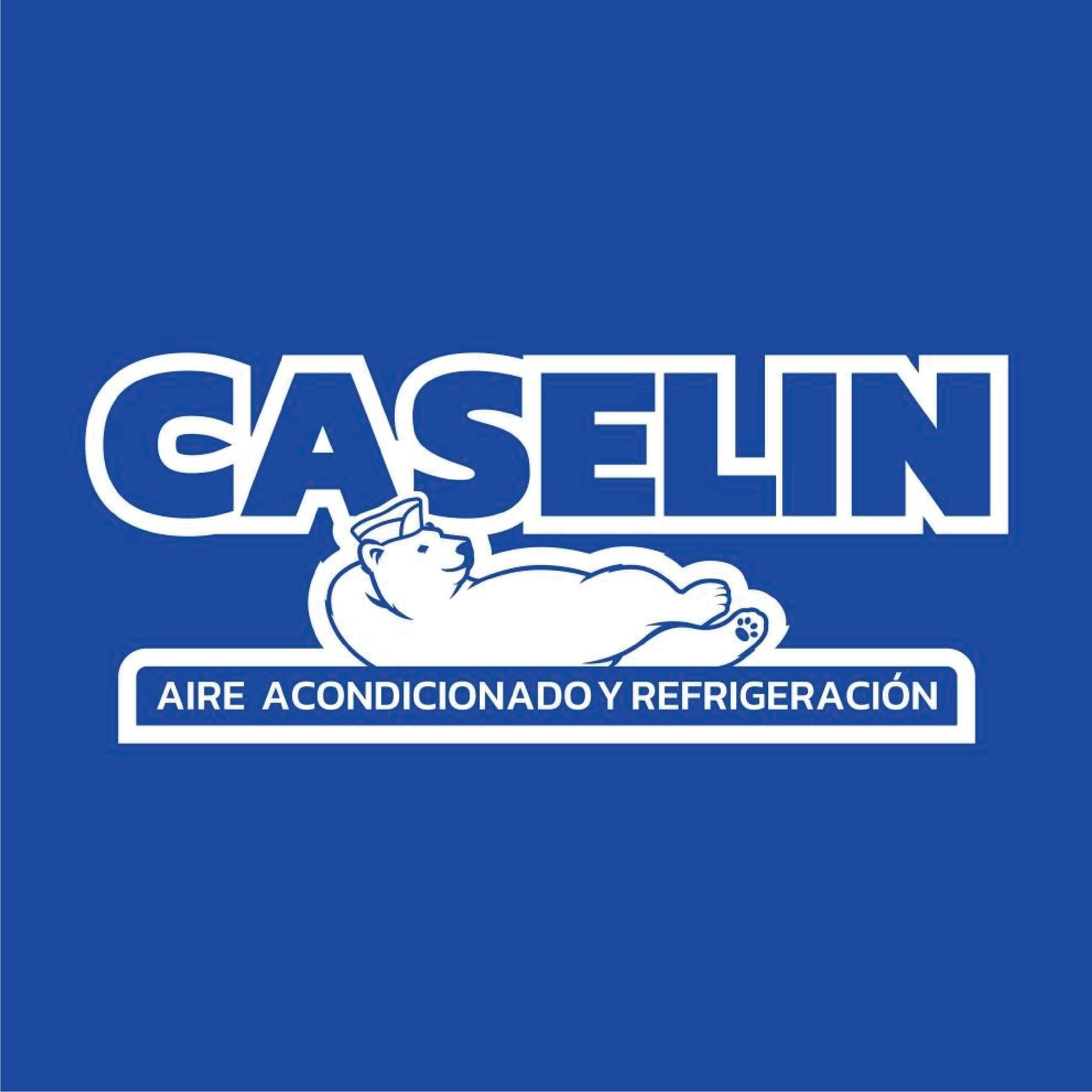 Logo-Caselin.png